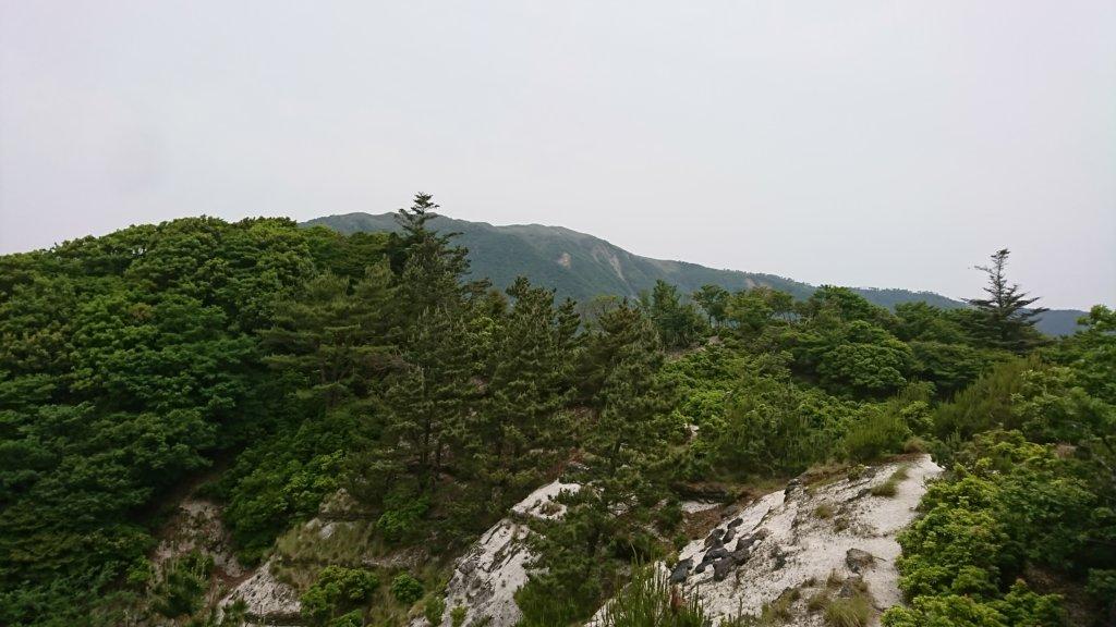竜ヶ岳を望む