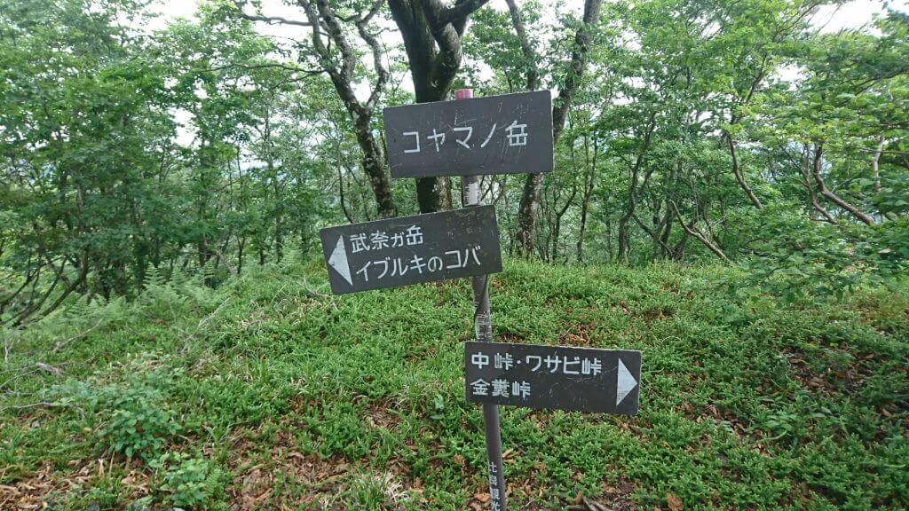コヤマノ岳
