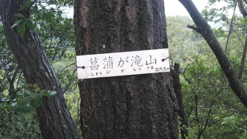 菖蒲が滝山